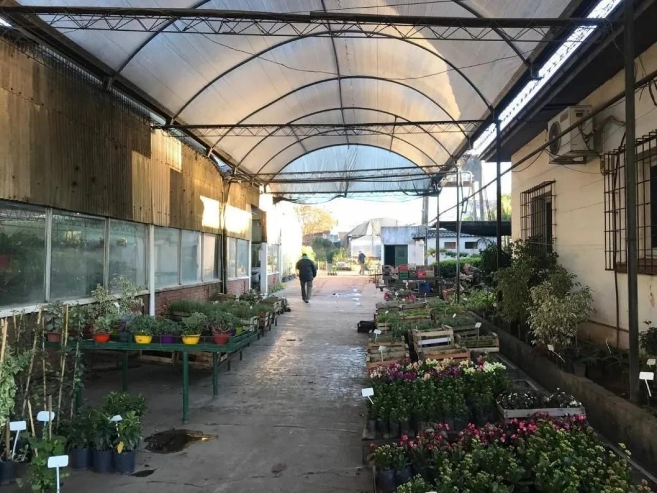 Venta de vivero en exclusiva esquina de Malvinas Argentinas